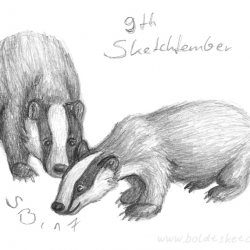 Sketchtember: Badgers